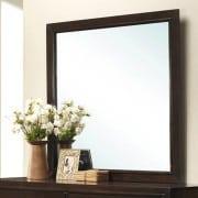 Allentown Mirror